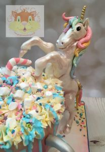 Unicorn model